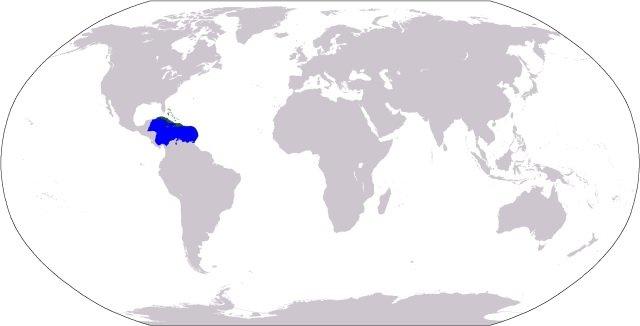 Caribbean Sea location